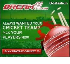 Why Using Professional Fantasy Cricket Is Important?