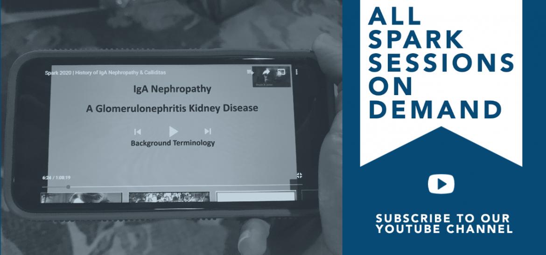 Kidney Disease Caused by Diabetes