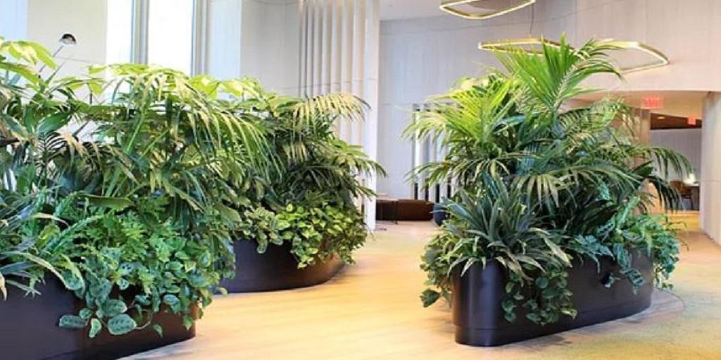 The Best Indoor Plantscaping in Philadelphia in 2021