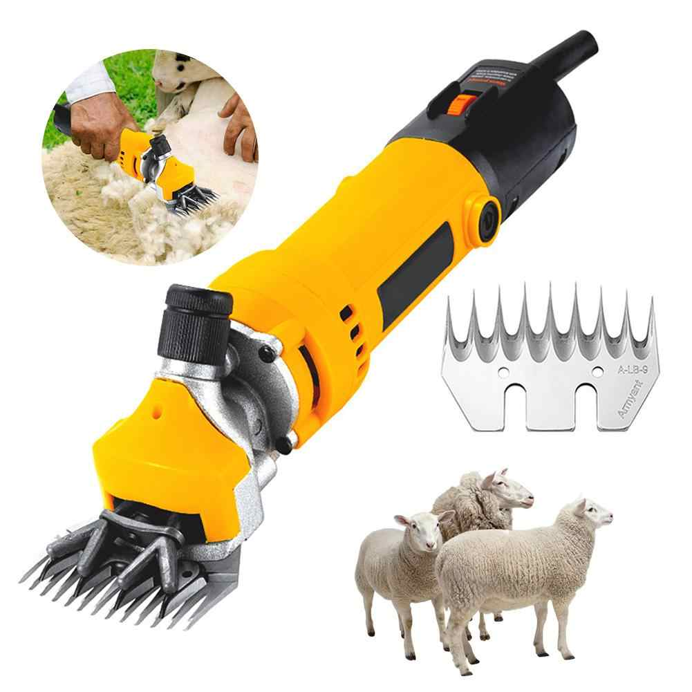 An Introduction to Buying Shearing Accessories Online